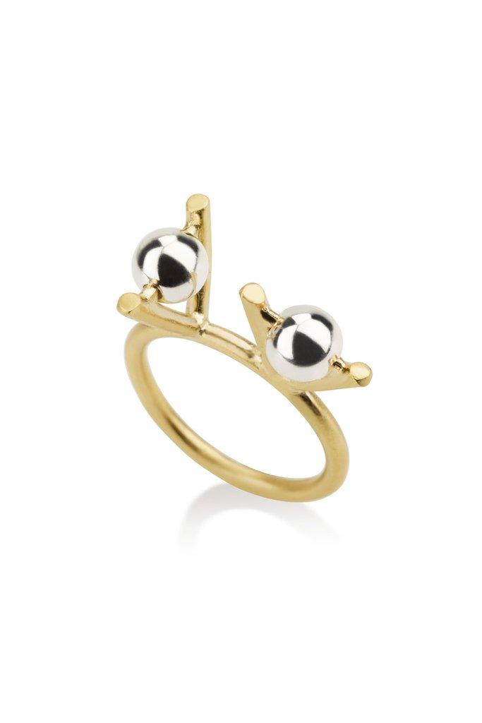 Lyndon ring